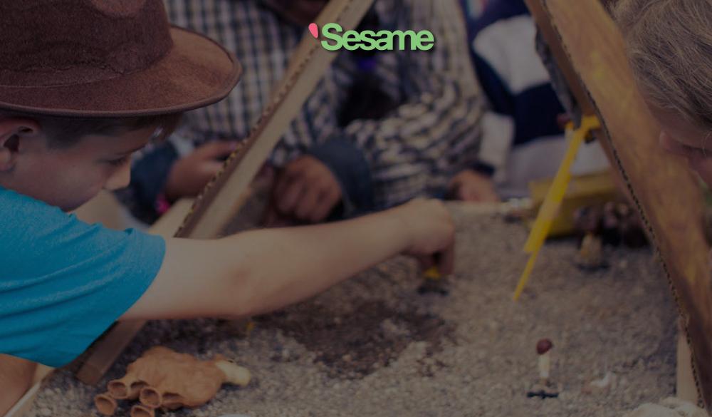03-15-Sesame